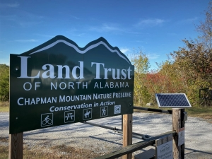 Chapman Mountain Forest Preserve