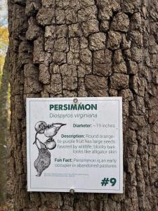 Chapman Preserve