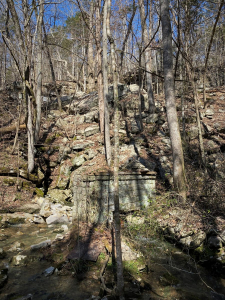 Bethel Springs Nature Preserve