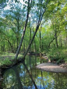 Bradford Creek GW