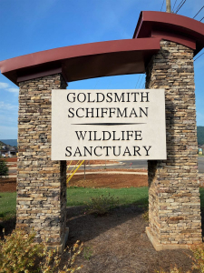 Southern Sanctuary