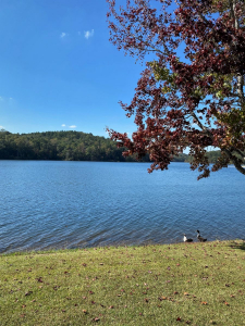 Lake Lurleen