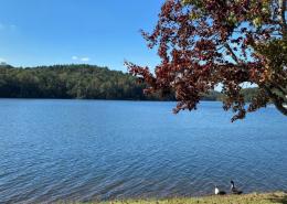 Lake Lurleen