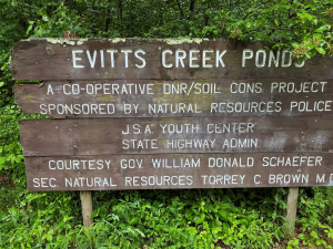 Three Ponds